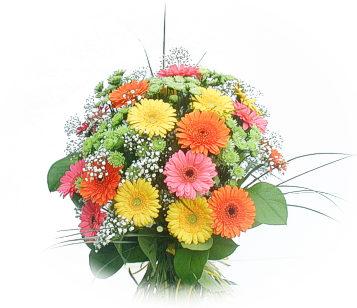 13 adet gerbera çiçegi buketi  Ardahan online çiçek gönderme sipariş