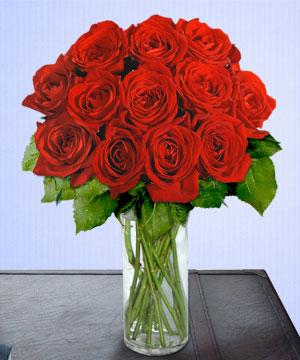 Anneme 12 adet cam içerisinde kirmizi gül  Ardahan çiçek siparişi sitesi