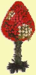 Ardahan çiçek gönderme  dügün açilis çiçekleri  Ardahan çiçek online çiçek siparişi