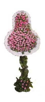 Ardahan ucuz çiçek gönder  dügün açilis çiçekleri  Ardahan internetten çiçek siparişi