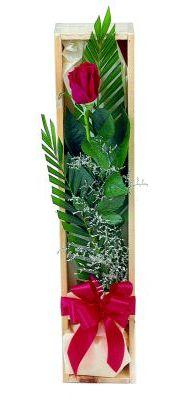 1 adet kutuda kirmizi gül  Ardahan çiçek gönderme sitemiz güvenlidir