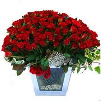 Ardahan çiçekçiler   101 adet kirmizi gül aranjmani