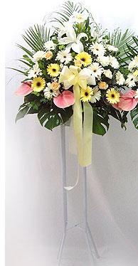 Ardahan online çiçek gönderme sipariş   perförje çiçegi dügün çiçekleri