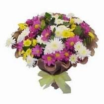 Ardahan çiçekçi telefonları  Mevsim kir çiçegi demeti