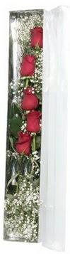 Ardahan çiçek siparişi sitesi   5 adet gülden kutu güller