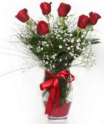 7 adet gülden cam içerisinde güller  Ardahan 14 şubat sevgililer günü çiçek