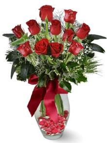 9 adet gül  Ardahan internetten çiçek satışı  kirmizi gül