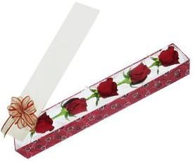 Ardahan internetten çiçek satışı  kutu içerisinde 5 adet kirmizi gül