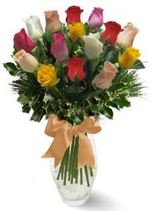 15 adet vazoda renkli gül  Ardahan internetten çiçek satışı