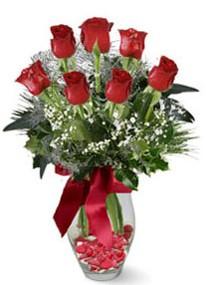 Ardahan internetten çiçek siparişi  7 adet kirmizi gül cam vazo yada mika vazoda