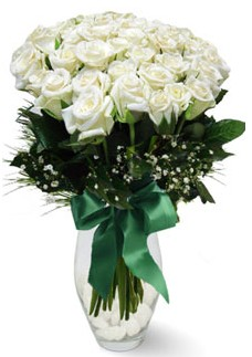 19 adet essiz kalitede beyaz gül  Ardahan çiçekçiler