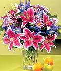 Ardahan çiçek mağazası , çiçekçi adresleri  Sevgi bahçesi Özel  bir tercih