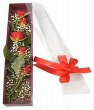 kutu içinde 5 adet kirmizi gül  Ardahan internetten çiçek siparişi