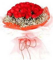 Ardahan hediye sevgilime hediye çiçek  21 adet askin kirmizi gül buketi