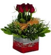 Ardahan çiçek gönderme  7 adet mika yada cam vazoda gül tanzimi