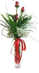 Ardahan çiçek siparişi sitesi  3 adet kirmizi gül vazo içerisinde