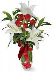 Ardahan çiçek siparişi vermek  5 adet kirmizi gül ve 3 kandil kazablanka