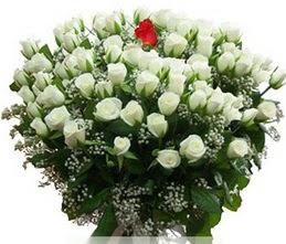 Ardahan internetten çiçek satışı  100 adet beyaz 1 adet kirmizi gül buketi