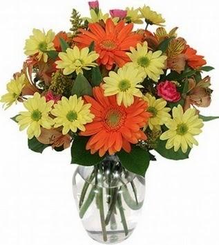 Ardahan hediye sevgilime hediye çiçek  vazo içerisinde karışık mevsim çiçekleri