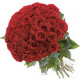 Ardahan güvenli kaliteli hızlı çiçek  101 adet kırmızı gül buketi modeli