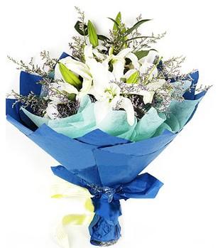 Ardahan anneler günü çiçek yolla  4 adet dal kazablankadan görsel buket