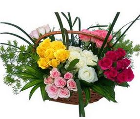 Ardahan ucuz çiçek gönder  35 adet rengarenk güllerden sepet tanzimi