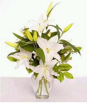 Ardahan çiçek gönderme  2 dal cazablanca vazo çiçeği