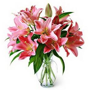 3 dal kazablanka görsel vazosu  Ardahan internetten çiçek siparişi