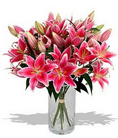 4 dal cazablanca görsel vazosu  Ardahan çiçekçi mağazası