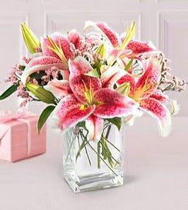 2 dal kazablanka görsel vazosu  Ardahan çiçek siparişi sitesi