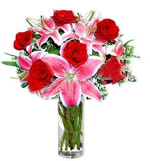 Ardahan çiçek yolla  1 dal cazablanca ve 6 kırmızı gül çiçeği