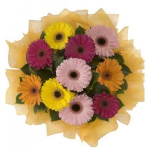 Ardahan İnternetten çiçek siparişi  11 adet karışık gerbera çiçeği buketi