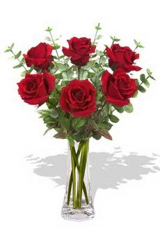 Ardahan çiçekçi mağazası  6 kırmızı gül vazosu