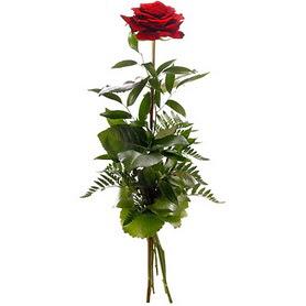 Ardahan online çiçekçi , çiçek siparişi  1 adet kırmızı gülden buket