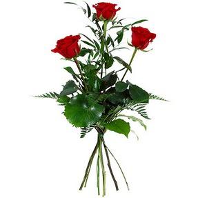 Ardahan uluslararası çiçek gönderme  3 adet kırmızı gülden buket