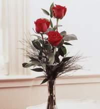 Ardahan internetten çiçek satışı  Vazoda 3 adet güzel gül