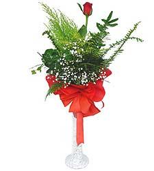Ardahan anneler günü çiçek yolla  Cam vazoda masum tek gül