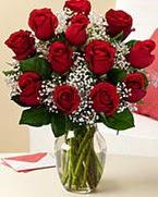 Sevgilime hediye 9 adet 1.ci kalite gül  Ardahan anneler günü çiçek yolla