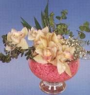 Ardahan çiçek mağazası , çiçekçi adresleri  Dal orkide kalite bir hediye