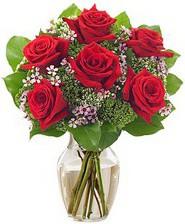 Kız arkadaşıma hediye 6 kırmızı gül  Ardahan internetten çiçek siparişi