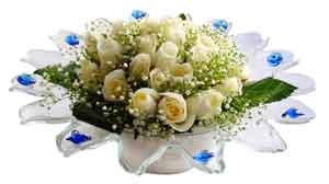 Ardahan çiçek online çiçek siparişi  11 adet Beyaz güller özel cam tanzim