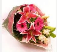1 dal kazablanka ve mevsim çiçekleri  Ardahan internetten çiçek siparişi