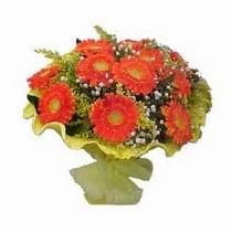 Ardahan çiçek yolla  11 adet seçme gerbera çiçegi
