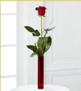 Vazo içerisinde 1 adet kırmızı gül  Ardahan internetten çiçek siparişi