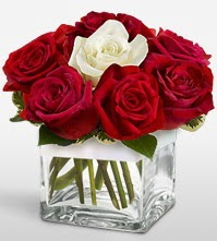 Tek aşkımsın çiçeği 8 kırmızı 1 beyaz gül  Ardahan uluslararası çiçek gönderme