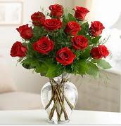 Vazo içerisinde 12 kırmızı gül  Ardahan çiçek satışı