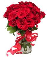 21 adet vazo içerisinde kırmızı gül  Ardahan çiçek satışı