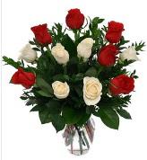 Vazo içerisinde 6 kırmızı 6 beyaz gül  Ardahan hediye çiçek yolla