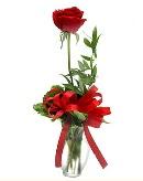 vazo içerisinde 1 adet kırmızı gül  Ardahan çiçekçi telefonları