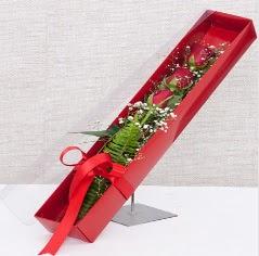 Kutu içerisinde 3 adet kırmızı gül  Ardahan online çiçek gönderme sipariş